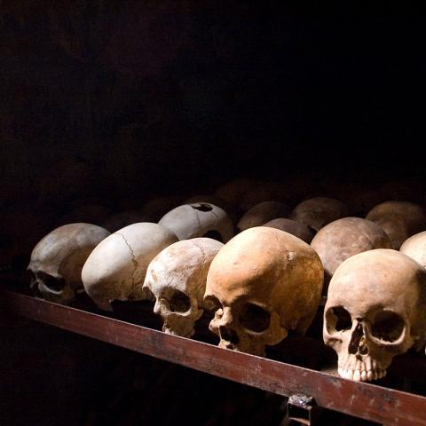 Nearly a dozen human skulls on what appears to be a table.