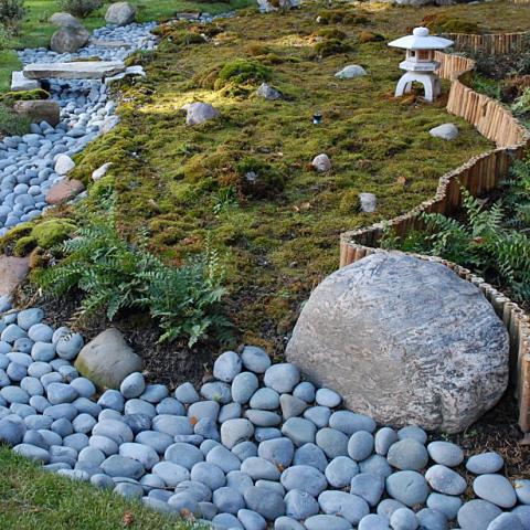 A zen garden with moss and stones.